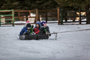 Three young kids in a sled